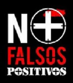 20100326141140-no-falsos-positivos.edit.jpg